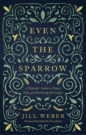 Even the Sparrow Cover