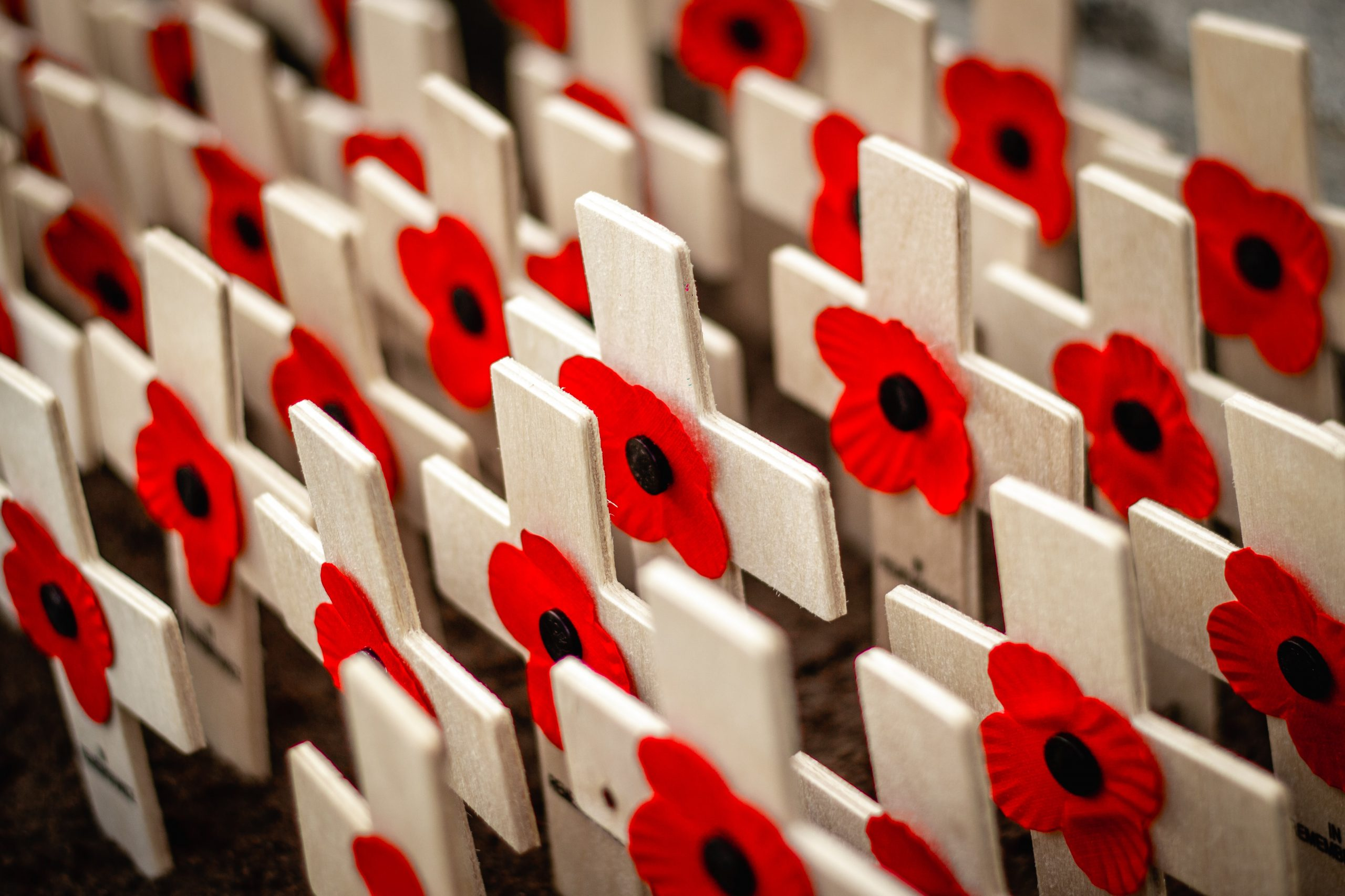 Armistice Day 2020: Remembering Stories that Time has Forgotten
